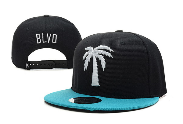 BLVD Supply Snapbacks Hat XDF 1