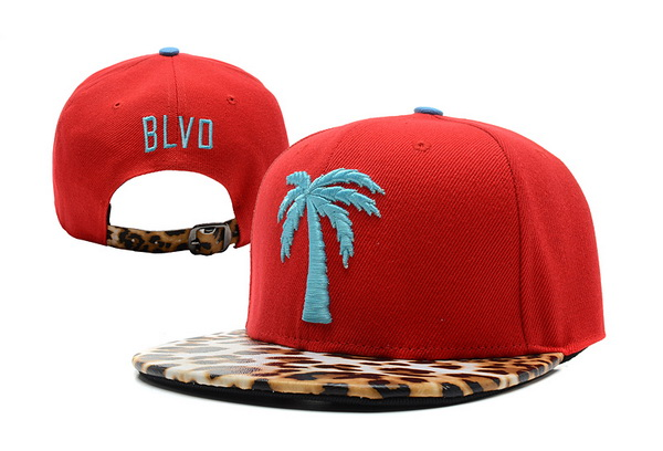 BLVD Supply Snapbacks Hat XDF 4