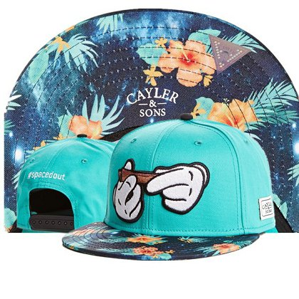 Cayler&Sons Snapback Hat TY 14080208