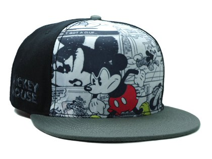 Cartoon Snapback Hat SF-H (9)