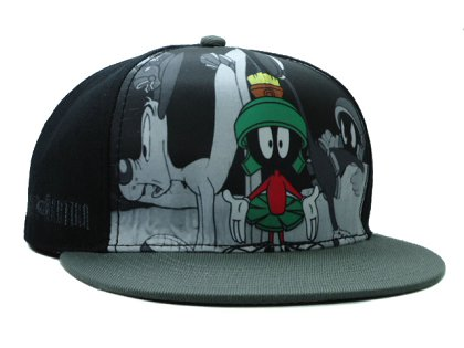 Cartoon Snapback Hat SF-H (12)