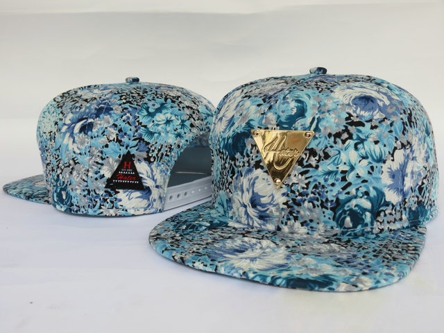 HATER Snapbacks Hat LS06