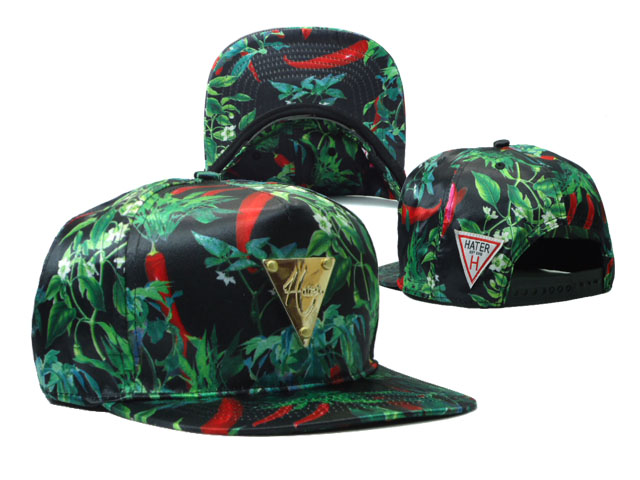 HATER Snapbacks Hat SF 19