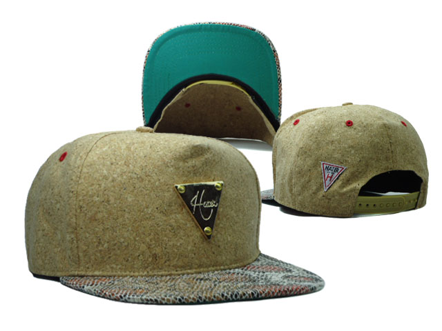 HATER Snapbacks Hat SF 25