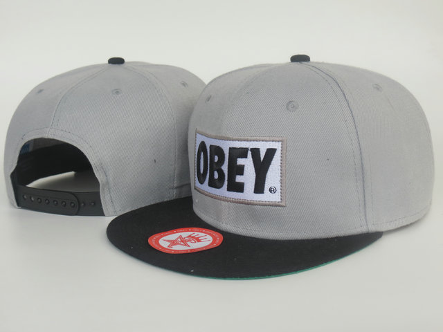 Obey Grey Snapback Hat LS
