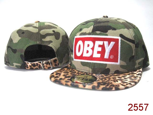 OBEY Snapback Hat SG59