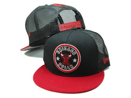 Chicago Bulls Snapback Hat SF 140802 12