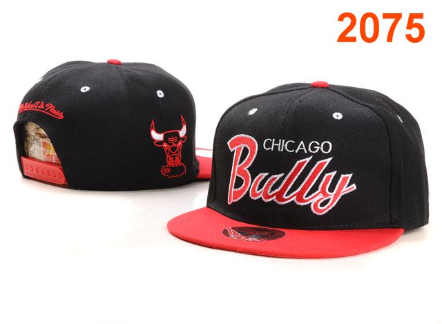 Chicago Bulls NBA Snapback Hat PT053