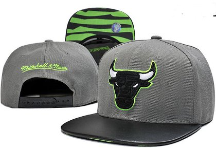 Chicago Bulls Hat GF 150426 22