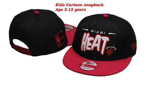 Miami Heat NBA Snapback Hat 60D13