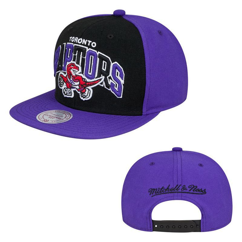 Toronto Raptors NBA Snapback Hat SD