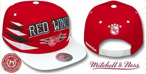 Detroit Red Wings NHL Snapback Hat Sf1