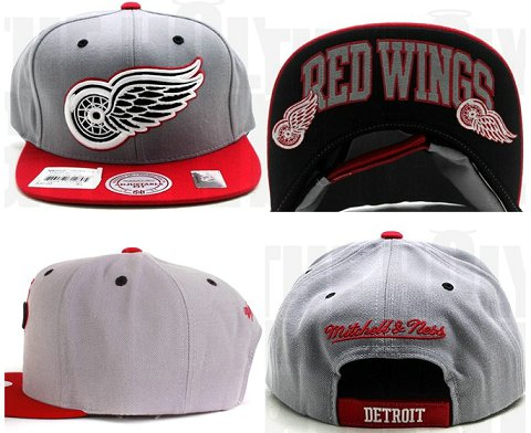 Detroit Red Wings NHL Snapback Hat Sf4